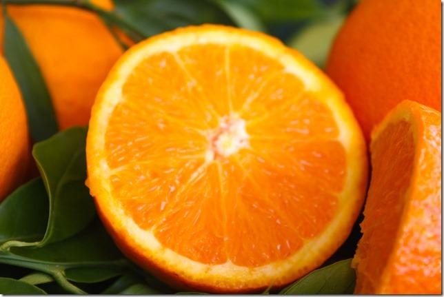Orangen_CitrusRicus