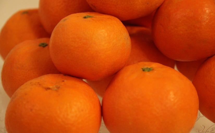 Produkttest und Gewinnspiel – Mandarinen von CitrusRicus